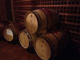 En estas  barricas bordelesas se crían los vinos de Aurum Red. Solo la de la izquierda contiene las destinadas a Aurum Red Gold