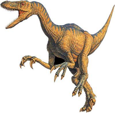 Dinosaurios-v-velociraptor_0002