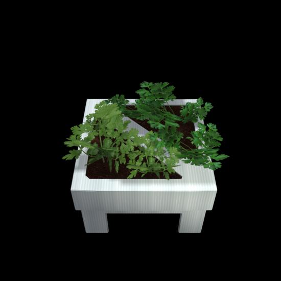 SeedBox-1