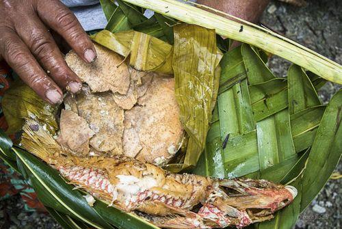 Taro y pescado Kapingamarangi-Paco Nadal