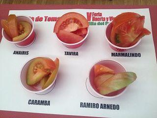 Cortes de distintas variedades de tomates dispuestas para la cata