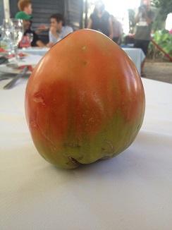 El tomate huevo toro tiene una forma característica