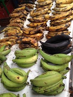 Plátanos con distintos grados de maduración, todos con distintas aplicaciones culinarias