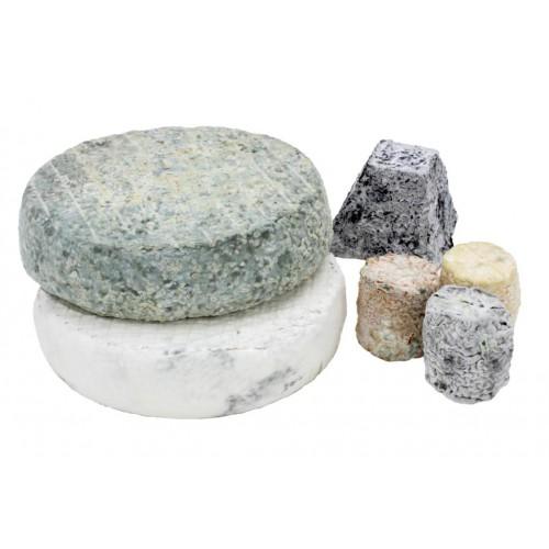 Quesos de leche cruda de oveja castellana granja cantagrullas 5-500x500