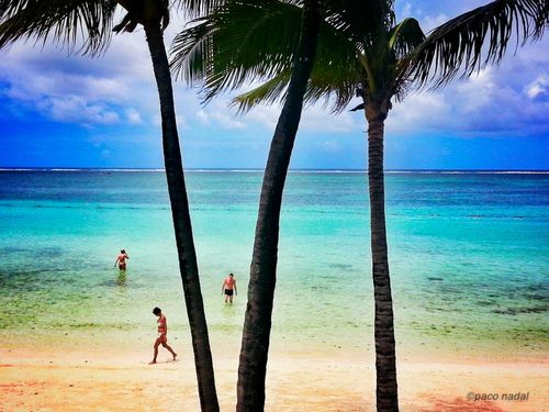 Playa de isla Mauricio-Paco Nadal