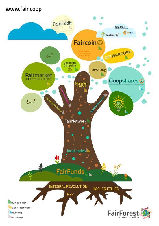 Fairforest_currentsituation