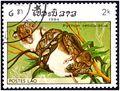 Laos_1984_python_reticulatus