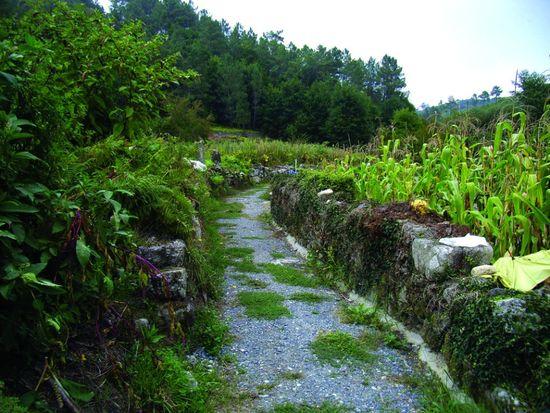 Camino dos Arreiros2 Magrama