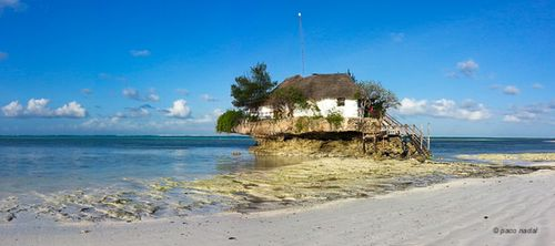 6. Zanzibar, The Rock - Paco Nadal
