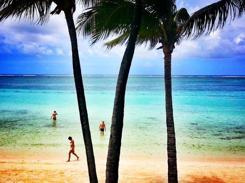 2 Febrero Isla Mauricio