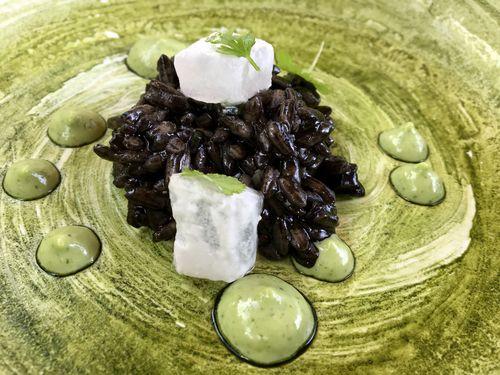 Arroz negro con sepia vegetal, aloe vera ecológico y fondo de alga clorella