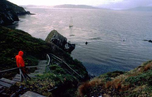 Llegada a isla de Hornos