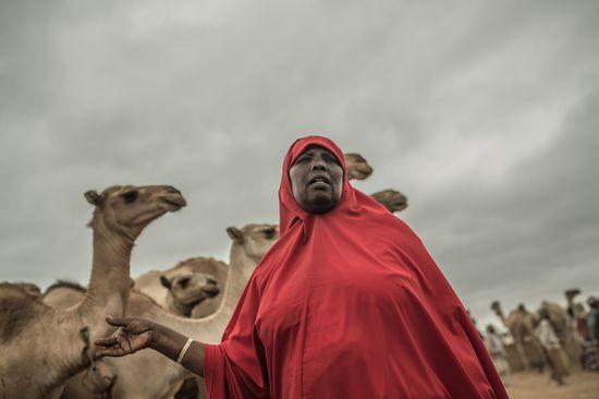 Mujer con camello