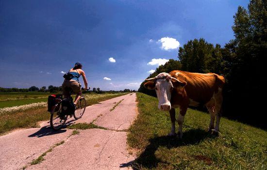 Miodrag_mitja_Bogdanovic-Ruta del Danubio en Serbia Turismo de Serbia