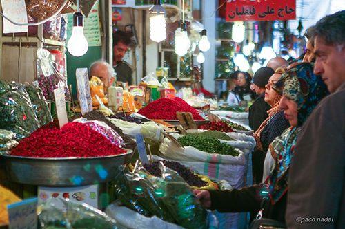 Irán 1 - Paco Nadal