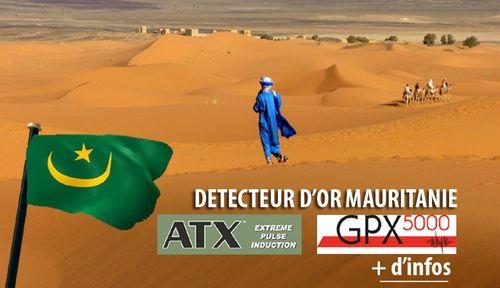 E3441c1d9473ccd15699b21554b6f72939dae424_detecteur-or-mauritanie