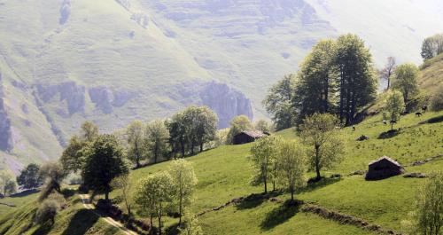 Paisaje del Valle del Pas