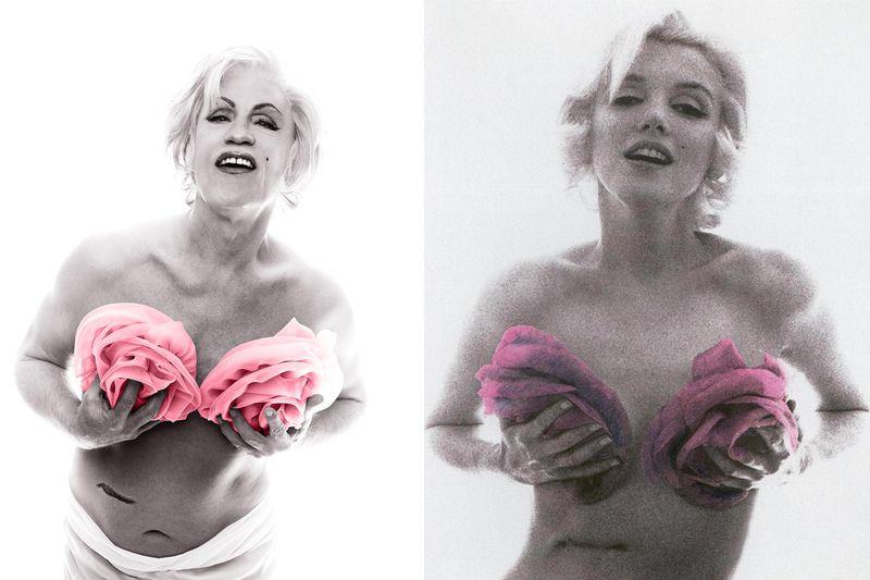 Marilyn_Rose