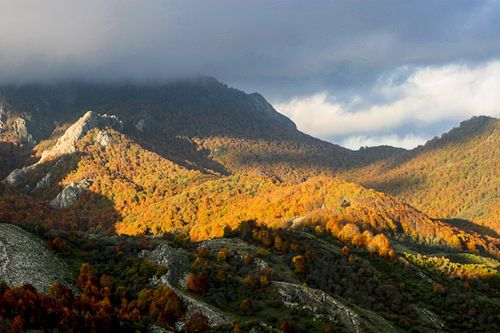 Montaña Palentina-Paco Nadal