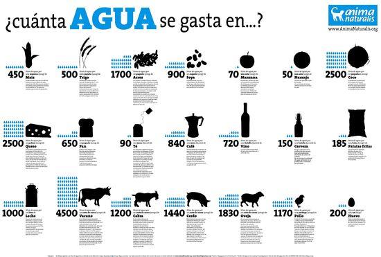 Consumo hídrico