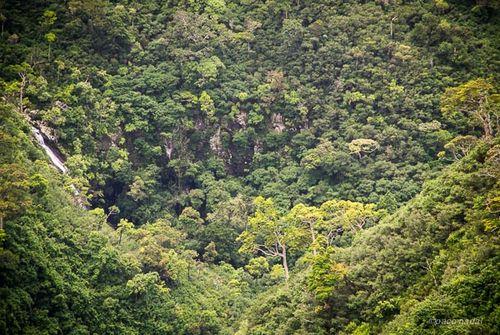 5. Mauricio, parque nacional Gargantas Río Negro