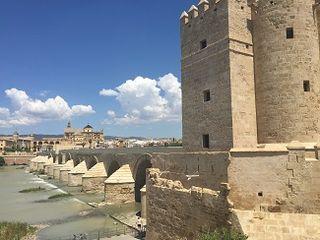 Perspectiva de Córdoba, torre de Calahorra, puente romano y al fondo la Mezquita