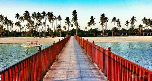4. Zanzibar, playas del sur - Paco Nadal