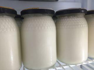 Espléndidos yogures
