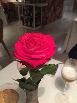 Rosa comestible