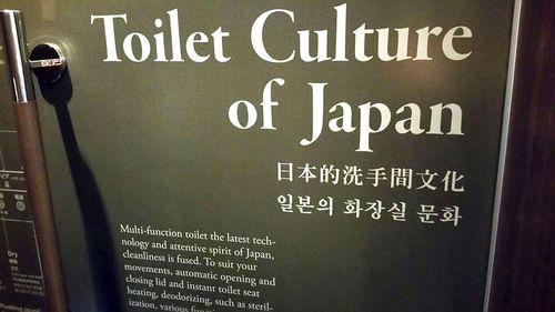 Váter japonés 3
