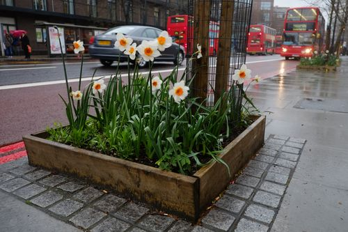 Guerrilla-garden in london httpthiswildlifestyle.comguide-to-guerrilla-gardening
