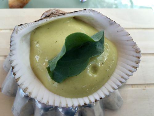 Almeja serrana, sin almeja. Dados de aloe vera en ceviche con emulsión de ostras y hoja de ostra (emertensia)