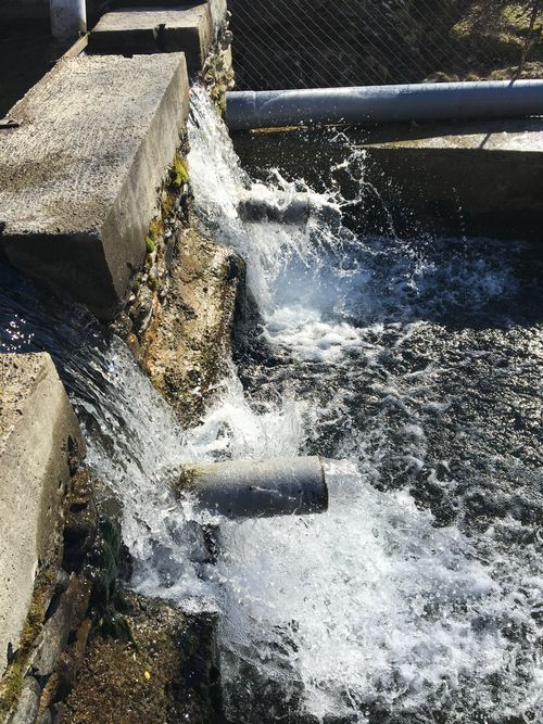 Chorros de agua del río Noguera de Tavascán