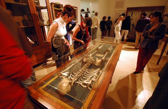 Museo de Antropología- Paula Villara1