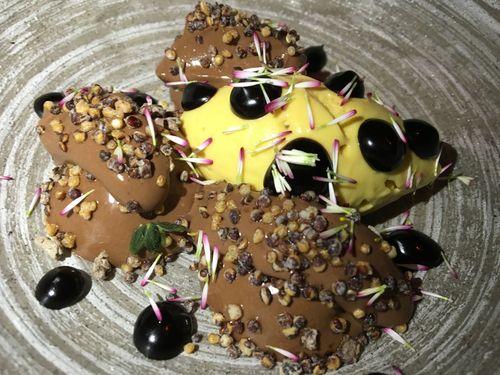Chocolate en diferentes texturas, quinoa crujiente y helado casero de lucuma