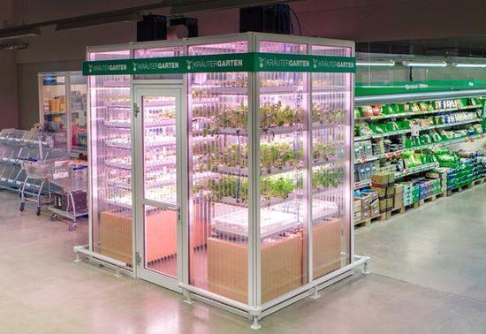 Invernadero vertical instalado en un supermercado