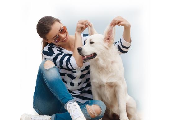 Imagen_descripcion_item-El-seguro-de-viaje-para-mascotas