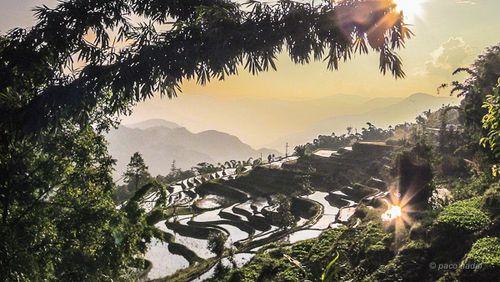 Yuanyang 3
