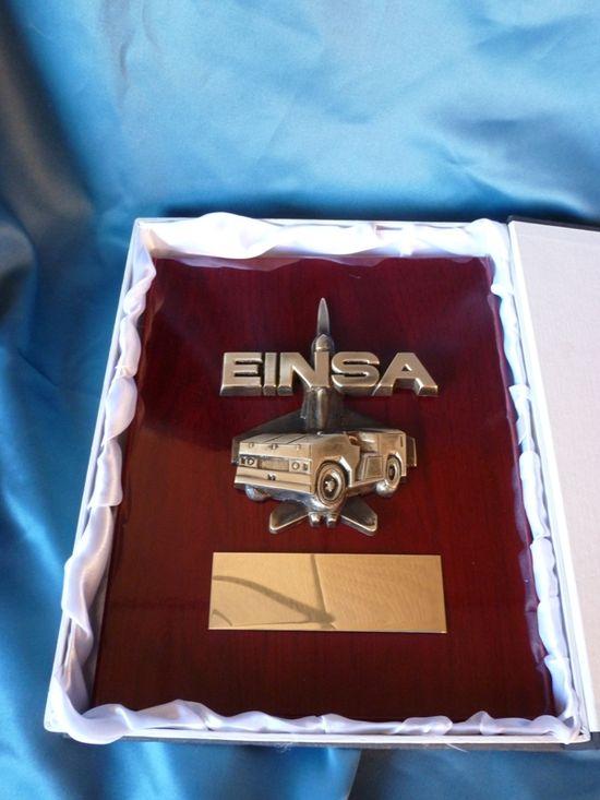 Einsa