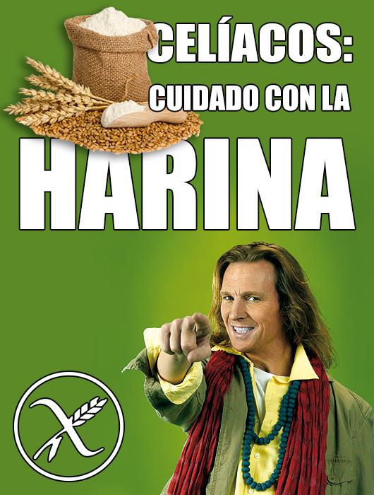 POCHOLO-y-la-HARINA-1