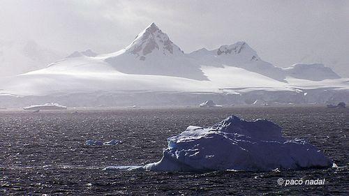 Isla Livingstone, Antártida-Paco Nadal