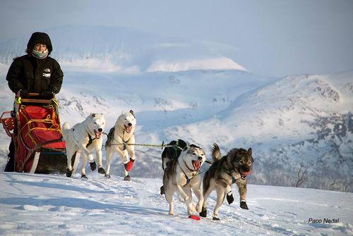 Tromso, Noruega-Paco Nadal