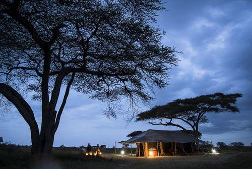 Safari en África-Paco Nadal