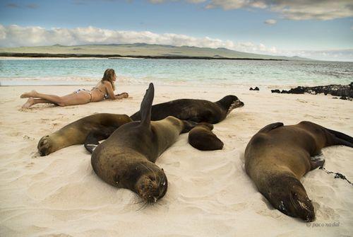 Islas Galápagos-Paco Nadal