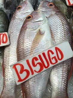 Bisugo