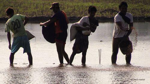 Lago Inle, Birmania 7-Paco Nadal