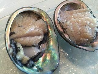 1 Sashimi de abalón en sus propias conchas