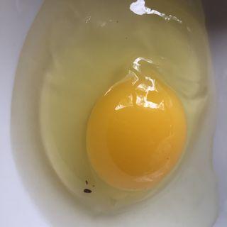 Huevo de gallinas marradunas