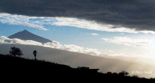 Apertura Post Canarias