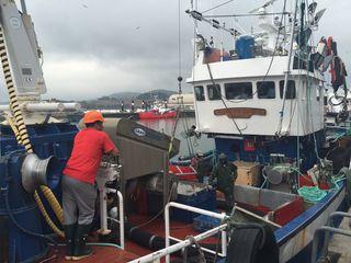 Barco anchoero atracado  en el puerto de Santoña.